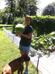 """Jackson"" helps me harvest a melon from our garden"